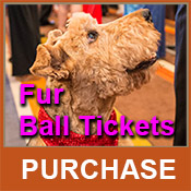17th Annual Fur Ball