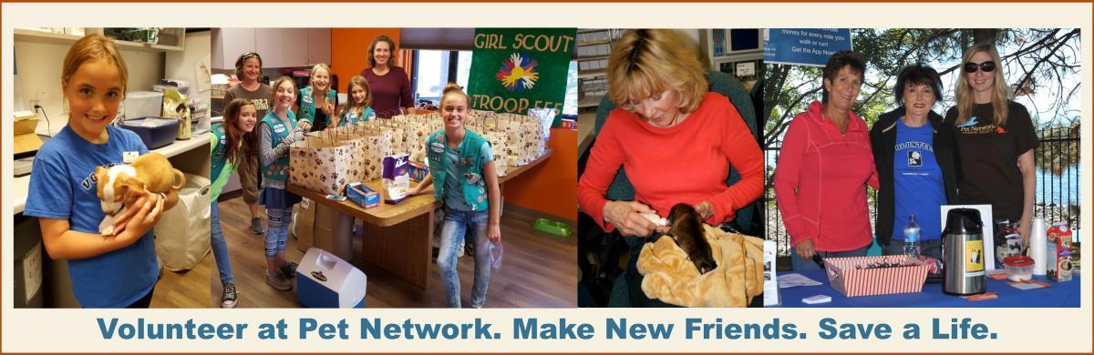 Volunteer at Pet Network