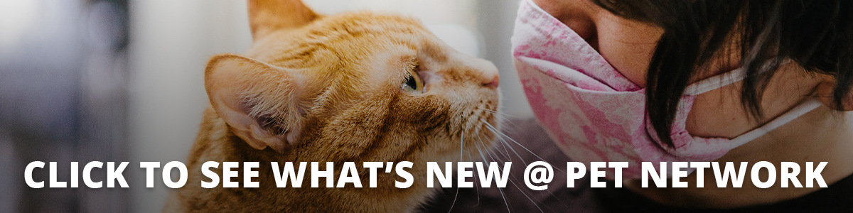 Cick to see what's new at Pet Network